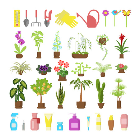 Window gardening infographic elements. Equipments for take care of indoor flowers. Vector set of flat illustration of horticultural sundry, house plants and flowers in pots. Illustration