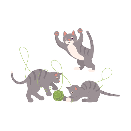 Cute gray kittens play with ball of threads. Vector illustration eps 10