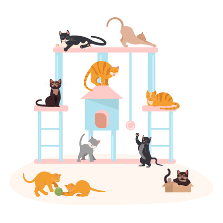 Cute gray kittens play with ball of threads and scratching posts. Vector illustration eps 10