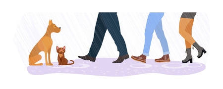 Legs of people group walking in autumn shoes. Flat design homeless cat and dog between men and women feet on rain background. Vector illustration eps 10