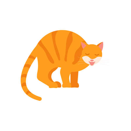 Playful ginger cat arched its back and meows. Square card with funny kitten in flat design. Happy cats day. Flat Art Vector Illustration Ilustrace