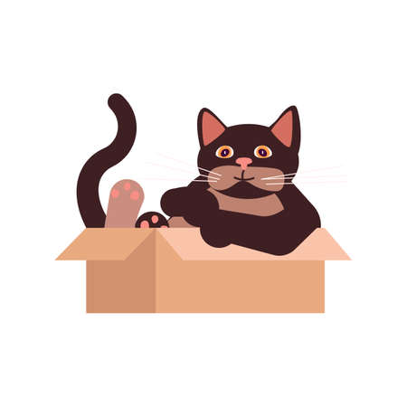The brown cat sits in a cardboard box. Square card with funny kitten in flat design. Happy cats day. Flat Art Vector Illustration