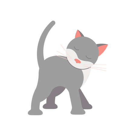 Funny gray cat. Square card with funny kitten in flat design. Happy cats day. Flat Art Vector Illustration Ilustrace