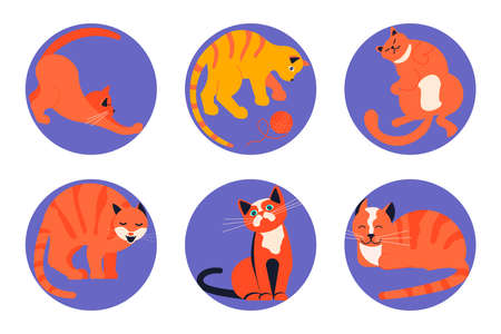 Set of Social Media Story highlight icons for cat lovers. Cats day, pets in different poses sitting, standing, playing. Flat Art Vector illustration