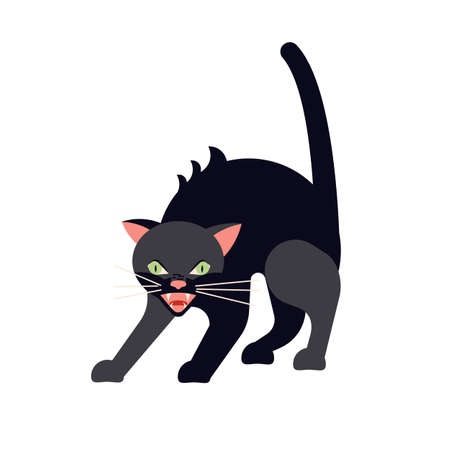 Black cat arches its back and hisses. Square card with funny kitten in flat design. Happy cats day. Flat Art Vector Illustration