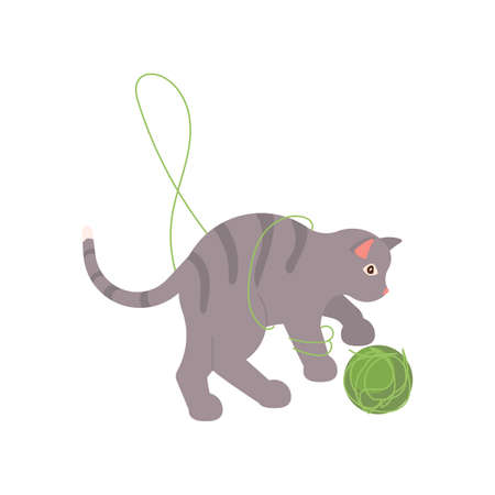 Playful gray cat playing with a green ball of thread. Square card with funny kitten in flat design. Happy cats day. Flat Art Vector Illustration