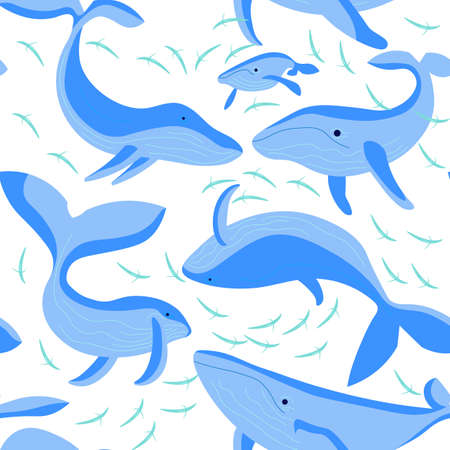 Seamless underwear pattern with blue whales on white background