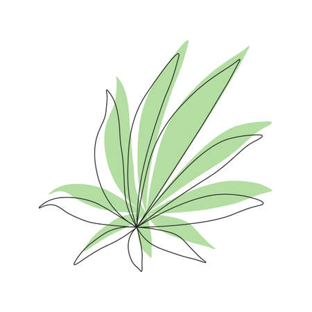 Green Cannabis leaf sign Illustration on white