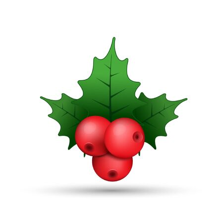 Christmas holly berries realistic twig illustration, vector. Mistletoe decorative red and green illustration.