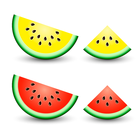 Sliced ripe watermelon realistic vector isolated on white background. Vector illustration.