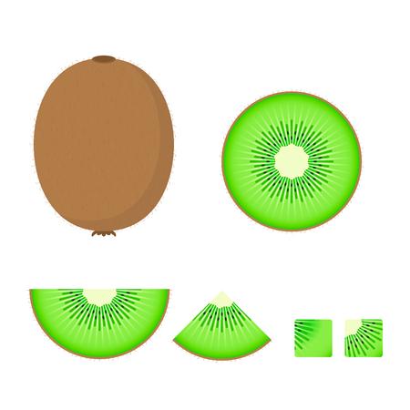 Kiwi Fruit set, Vector isolated colorful illustration.