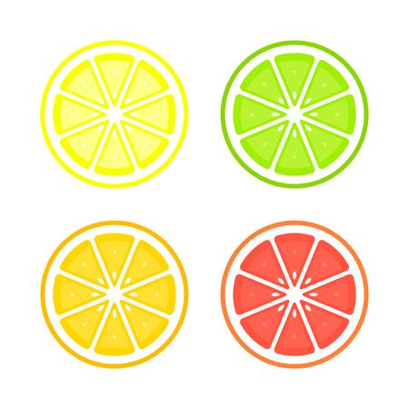 Citrus slices of lemon, orange, lime and grapefruit. Vector isolated illustration.  イラスト・ベクター素材