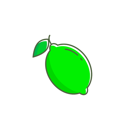 Lime vector icon illustration isolated on white background.