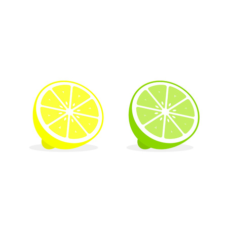 Lemon and lime cut section, fresh lemon vector illustration.