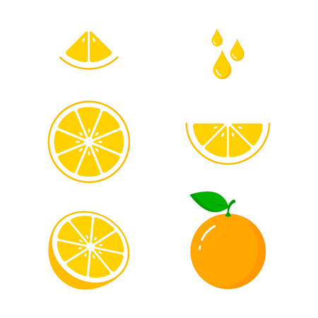 Orange fruit icon collection, vector colorful set, cut of orange.