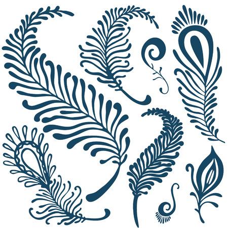 vector decorative feathers set Illustration