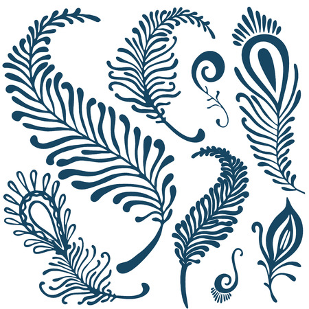 allegory: vector decorative feathers set Illustration