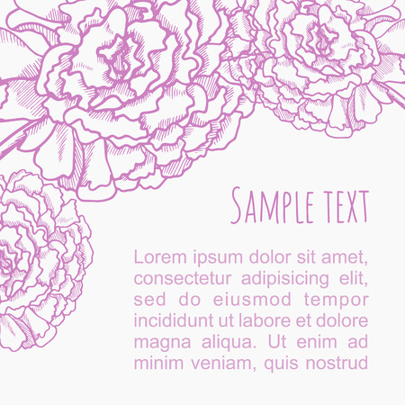 Vector abstract white background with hand draw violet peony flowers. Invitation romantic card