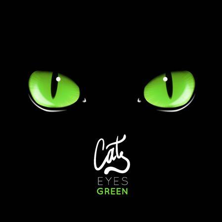 Black cat's green eyes vector illustration