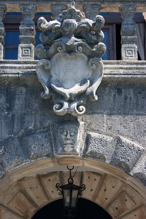 front elevation: Family coat of arms Buyovich