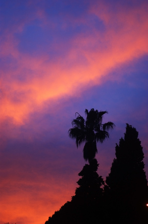 extramural: Southern sunset