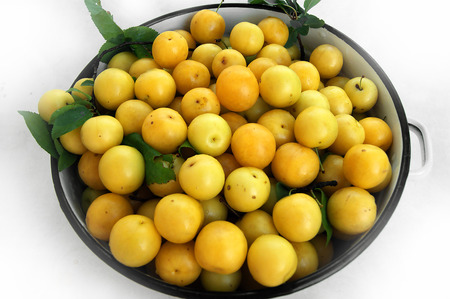 dulcet: Yellow cherry plum