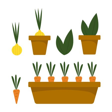Bright vector set with vegetables and flower in a brown flower pot on an isolated white background. Carrots, onions, aloe, cactus. Decorative element for the site, applications. Separate elements.