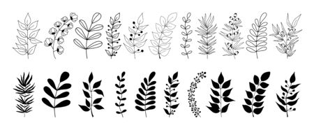 Set of black silhouettes of tropical leaves on an isolated white background. Botanical tree branches, palm leaf on the stem. Spring summer leaf. Concept design icons. Vector illustration. Vetores