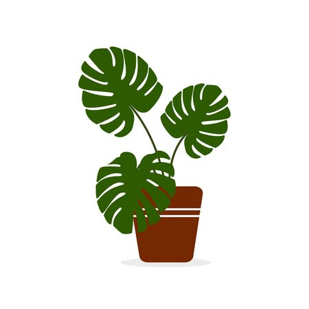 Indoor green plant in a flower pot in brown on an isolated white background. Vector illustration on an isolated white background. Modern abstract simple flat art style.