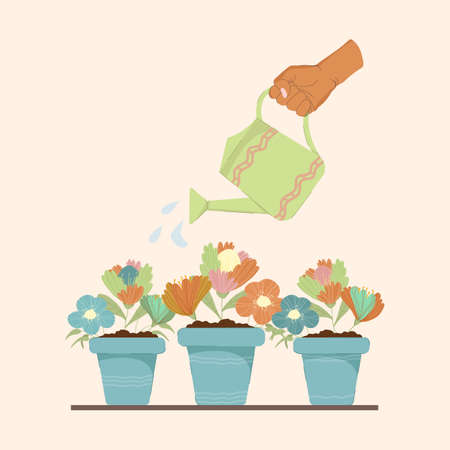 A hand with a watering can watered flowers planted in pots. Vector colorful illustration for design of greeting cards, print on fabric and mothers day. The concept of plant care and watering plants. 일러스트