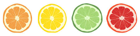 Set of citrus slices of lime, orange, grapefruit and lemon. Vector stock illustration. Textured effect on the skin.  イラスト・ベクター素材