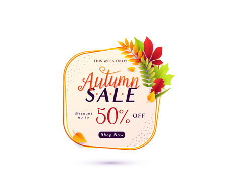 Vector illustration of fashion autumn sale banner isolated on white background