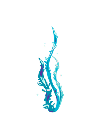 Underwater seaweed. Aquatic marine algae plant. Vector illustration isolated on white background