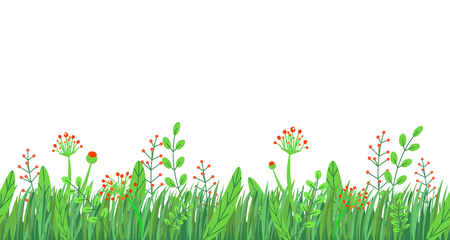 Spring grass seamless border vector. Floral wildflowers springtime nature plant element isolated on white background in minimal style. Stockfoto - 115641816