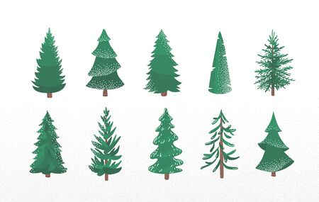 Set of fir tree with snow texture. Pine and spruce xmas vector illustration isolated on white background. Simple flat cartoon green plant elements for christmas decorating Standard-Bild - 135146095