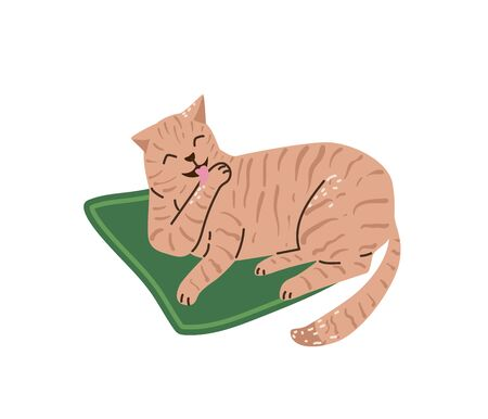 Beautiful pastel color cat washing itself and lying on green mat. Vector illustration in simple cartoon flat style. Isolated on white background  イラスト・ベクター素材