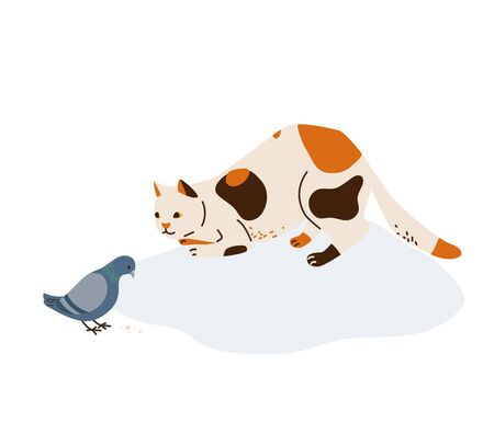 Beautiful three color cat in hunting pose watches to pigeon eating grain. Vector illustration in simple cartoon flat style. Isolated on white background