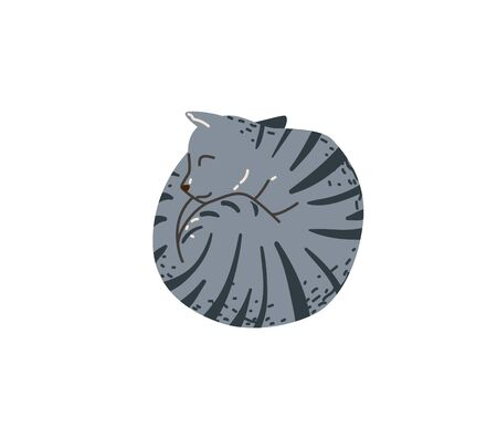 Grey color tabby funny cat sleeping curled up look like circle. Vector illustration in simple cartoon flat style. Isolated on white background  イラスト・ベクター素材