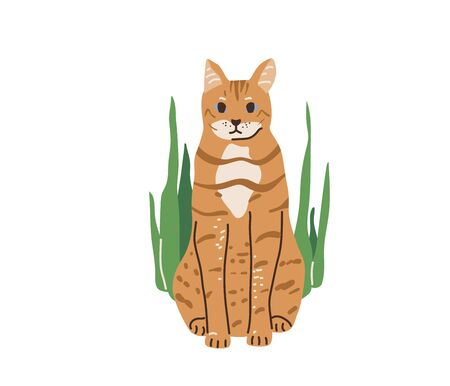 Red color tabby funny cat with blue eyes sitting surrounded green plants. Vector illustration in simple cartoon flat style. Isolated on white background
