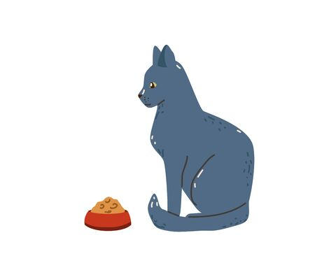Elegant grey cat sitting near bowl with food. Blue russian pet breed. Vector illustration in simple cartoon flat style. Isolated on white background