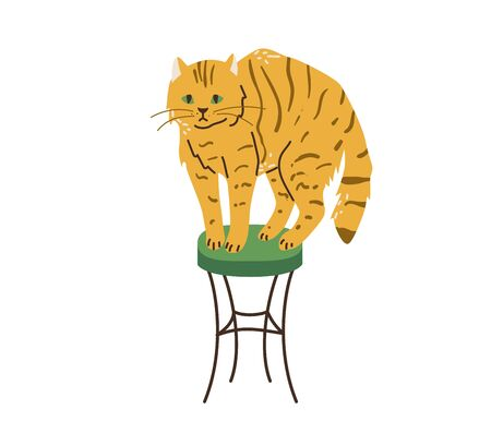 Bright orange tabby cat with green eyes standing on chair. Cats like to climb higher. Vector illustration in simple cartoon flat style. Isolated on white background.