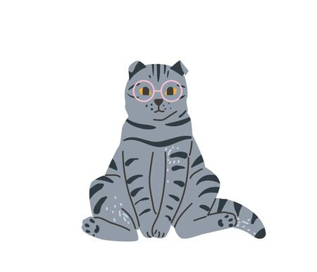 Tabby british grey cat with glasses sitting in funny pose. Vector illustration in simple cartoon flat style. Isolated on white background.