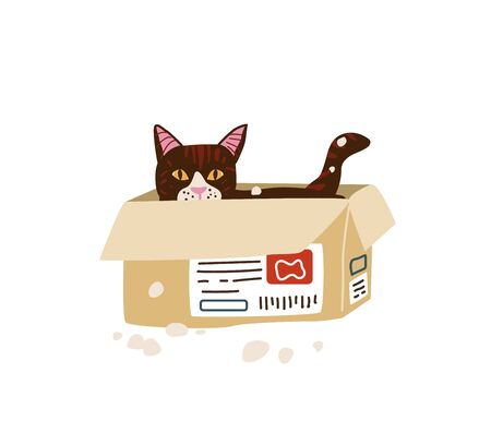 Cute cat sitting hiding in the post paper box. Vector illustration in simple cartoon flat style. Isolated on white background.
