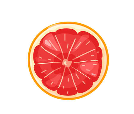 Red sliced orange grapefruit fruit in bright color cartoon flat style isolated on white background. Healthy food vector illustration. Organic meal concept  イラスト・ベクター素材
