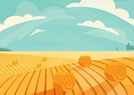 Wheat field landscape vector illustration after haymaking. Nature farm scenery with golden yellow haystack rolls. Bright summer countryside view