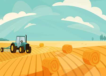 Wheat field landscape vector illustration after haymaking with tractor. Nature farm scenery with golden yellow haystack rolls. Bright summer countryside view