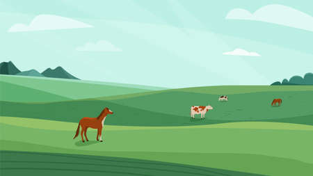 Farm landscape vector illustration. Green meadow field, hills. Cow, horse animal graze on fresh grass. Nature spring, summer farmland scenery. Countryside for organic production background