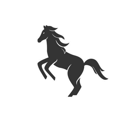 Horse silhouette vector illustration. Black and white stallion  . Isolated on white background