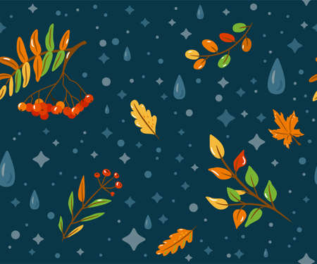 Autumn seamless pattern vector background with color rowan, water drops, fall leaves, floral plants on dark backdrop