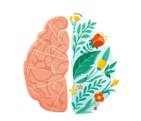 Mental health vector illustration. Left and right human brain concept. Balance design with flower, plant and leaves in flat simple style isolated on white background. Reklamní fotografie - 166389054